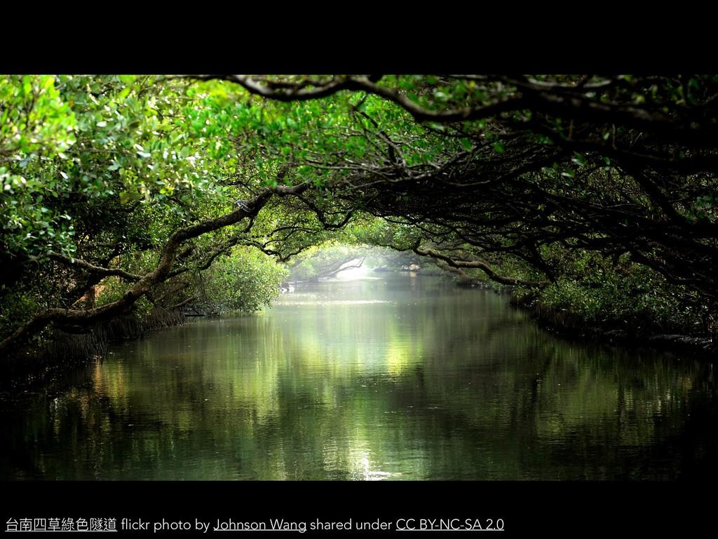台南四草綠⾊隧道 flickr photo by Johnson Wang shared un...