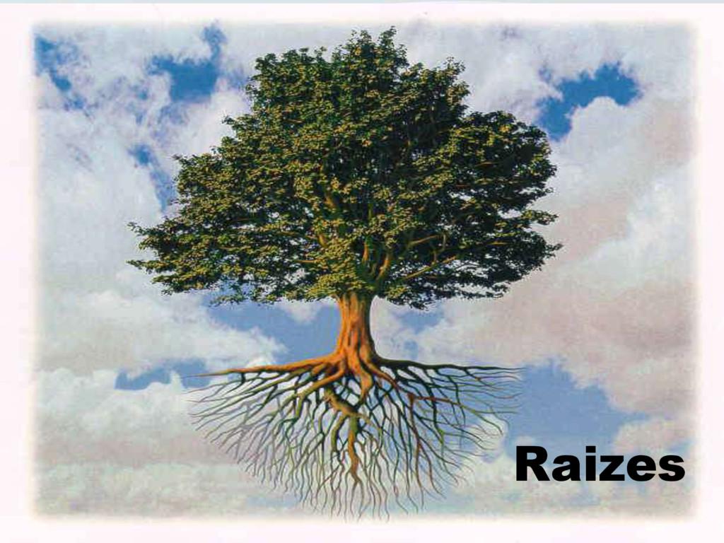 Raizes