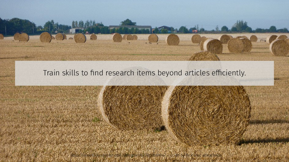 Train skills to find research items beyond arti...