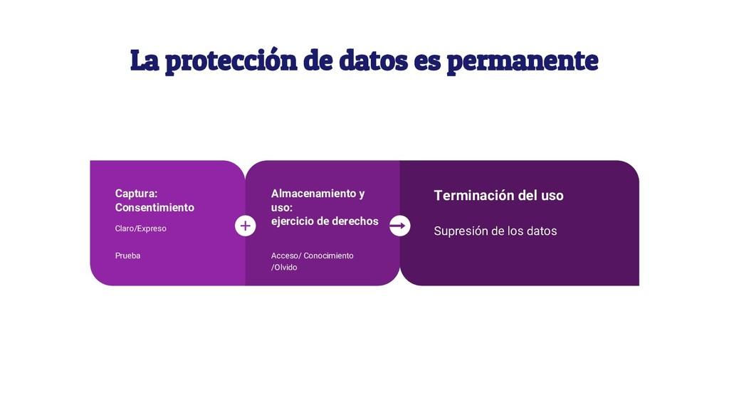 La protección de datos es permanente Vestibulum...