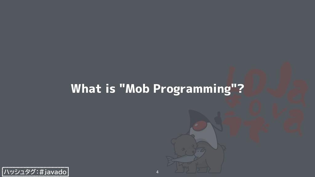"""ハッシュタグ:#javado What is """"Mob Programming""""? 4"""