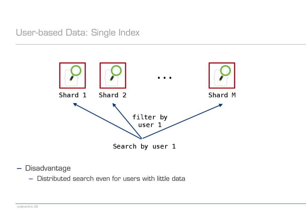 codecentric AG User-based Data: Single Index Sh...