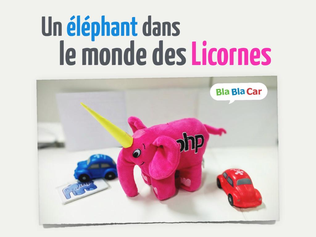 Un éléphant dans le monde des Licornes