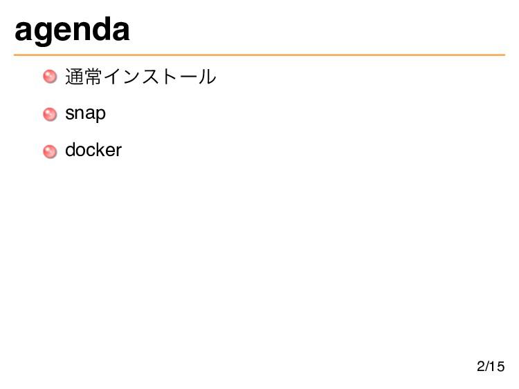 agenda 通常インストール snap docker 2/15