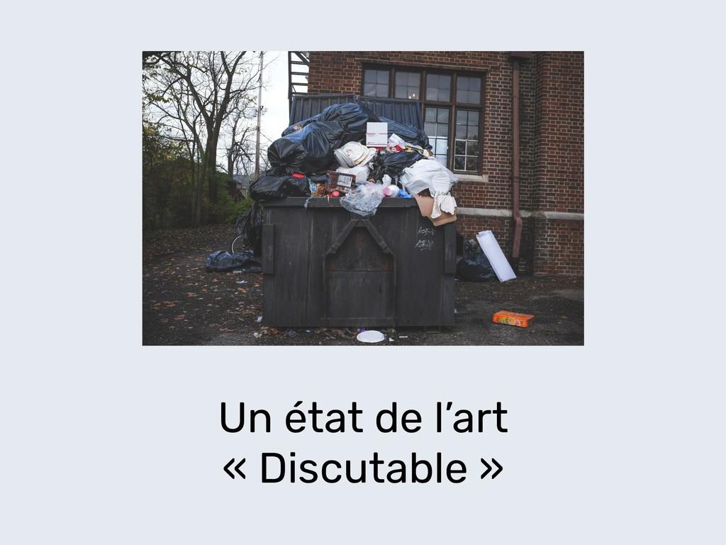 Un état de l'art « Discutable »