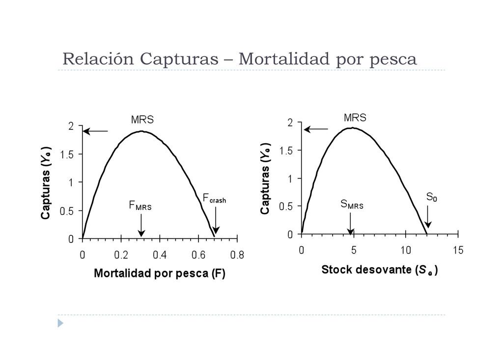 Relación Capturas – Mortalidad por pesca