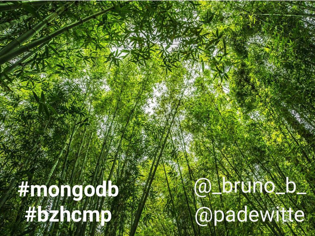 #mongodb #bzhcmp @_bruno_b_ @padewitte
