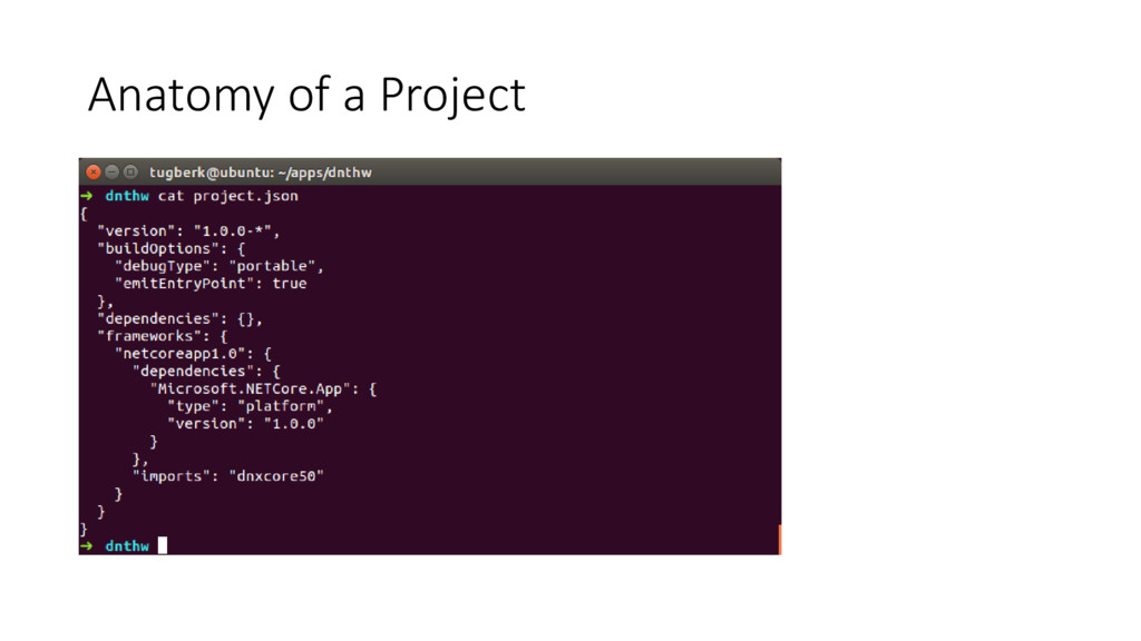 Anatomy of a Project