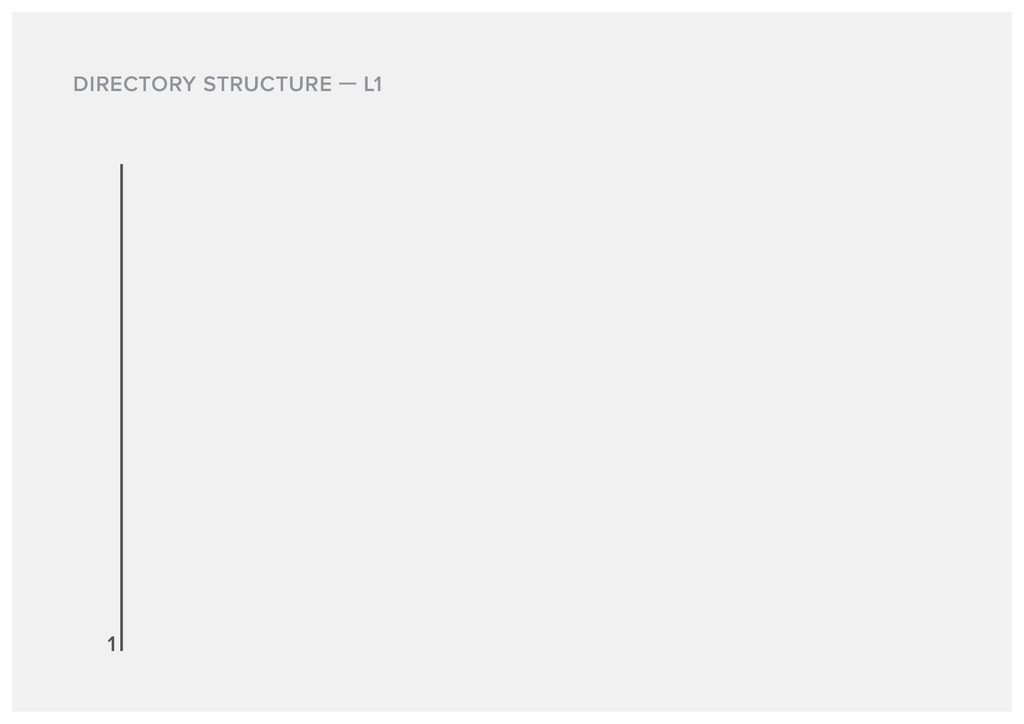 DIRECTORY STRUCTURE L1 1