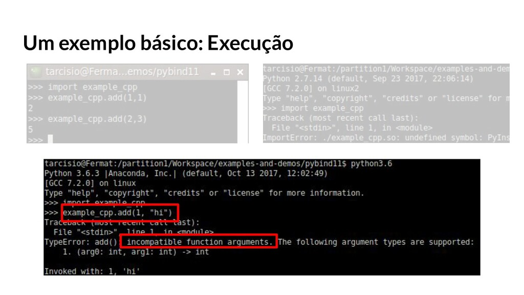 Um exemplo básico: Execução