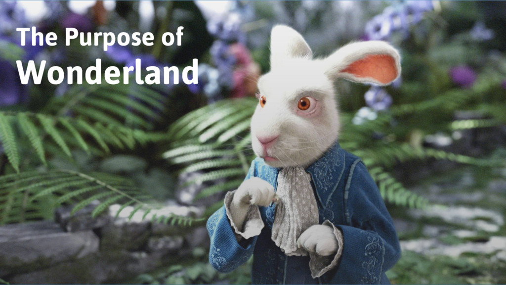 The Purpose of Wonderland