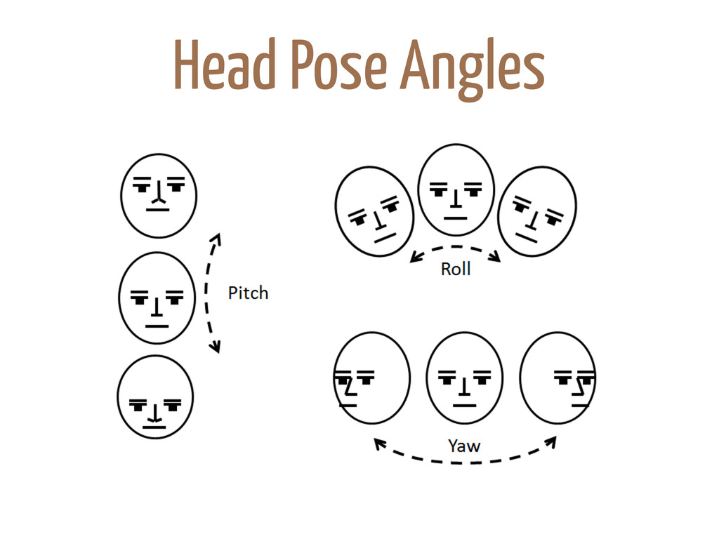Head Pose Angles