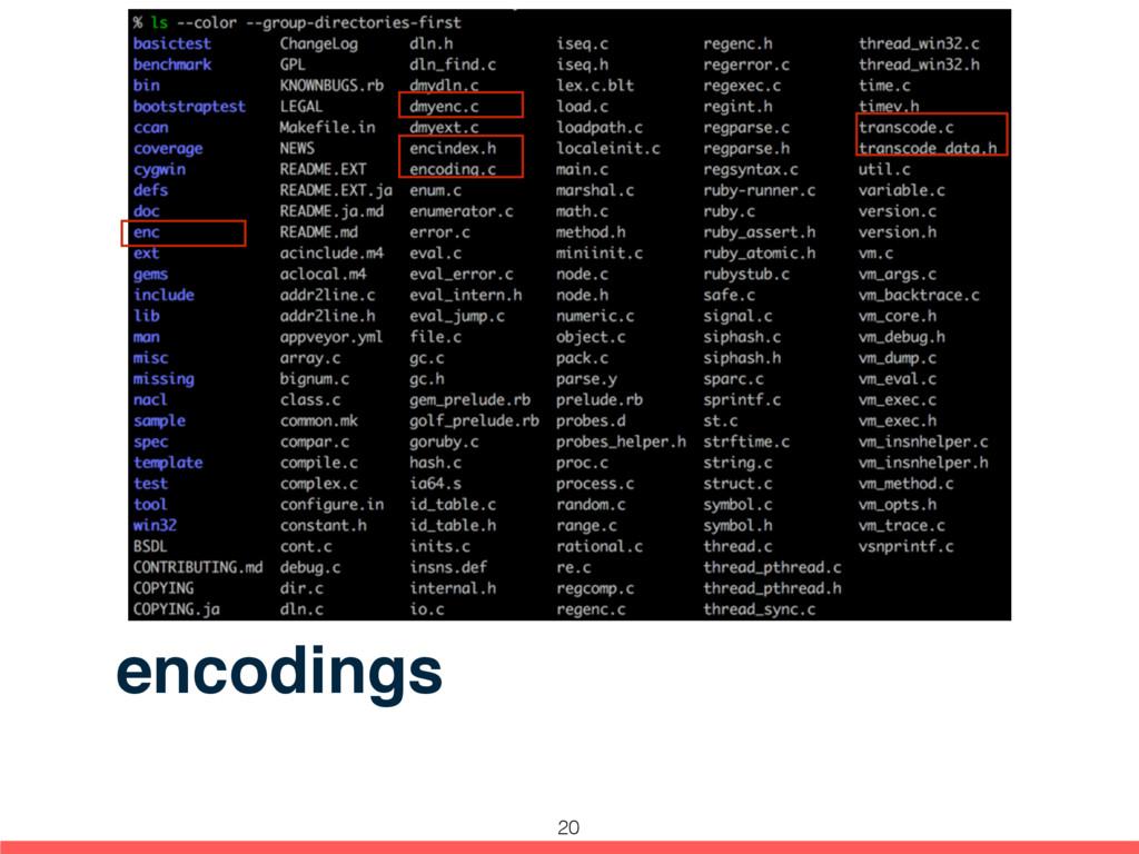 encodings 20