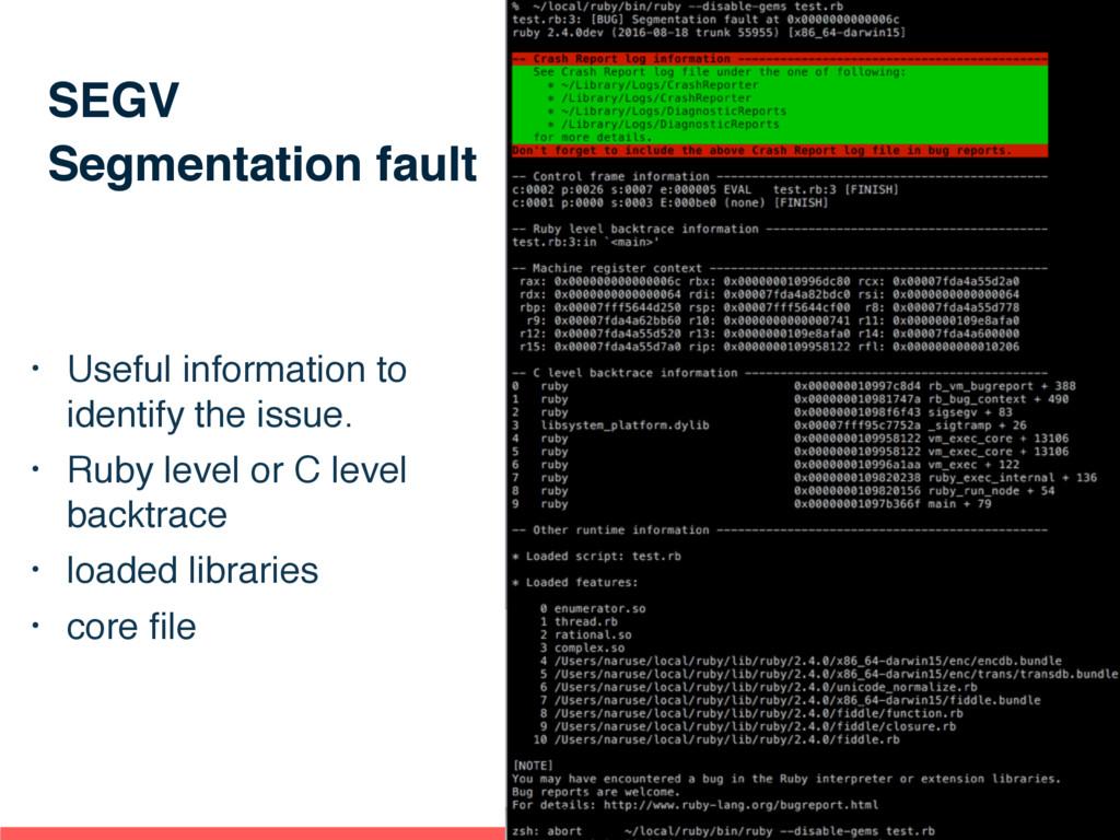SEGV Segmentation fault • Useful information to...