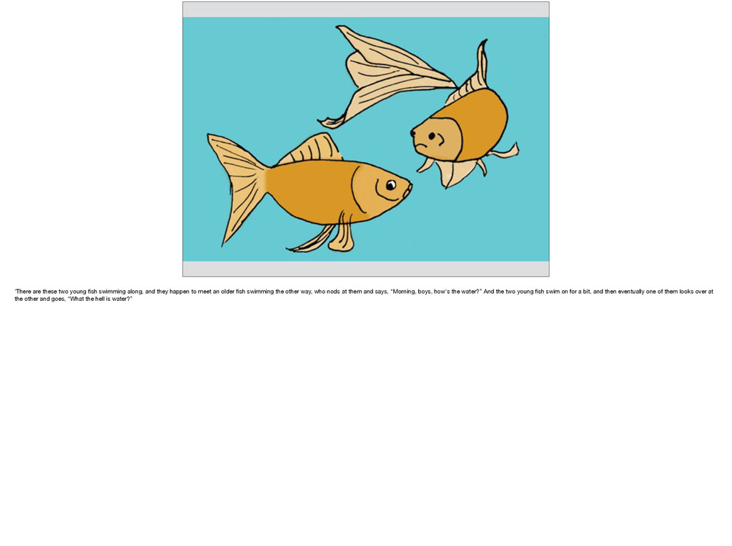'There are these two young fish swimming along, ...