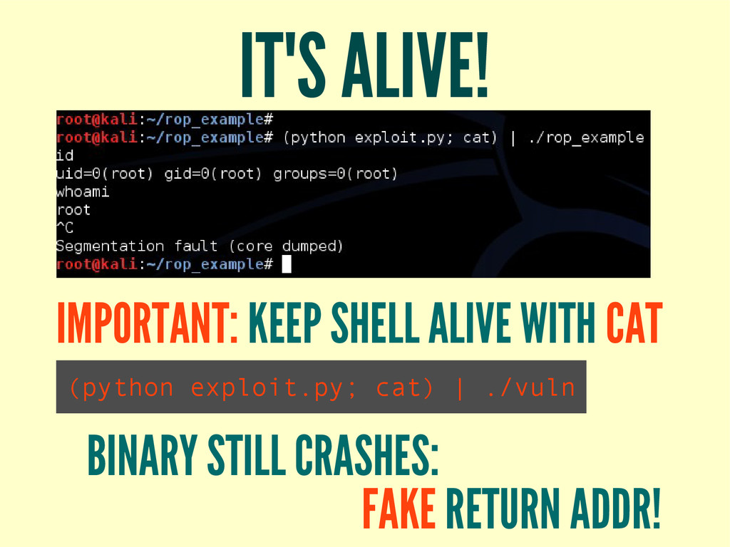 IT'S ALIVE! IMPORTANT: KEEP SHELL ALIVE WITH CA...