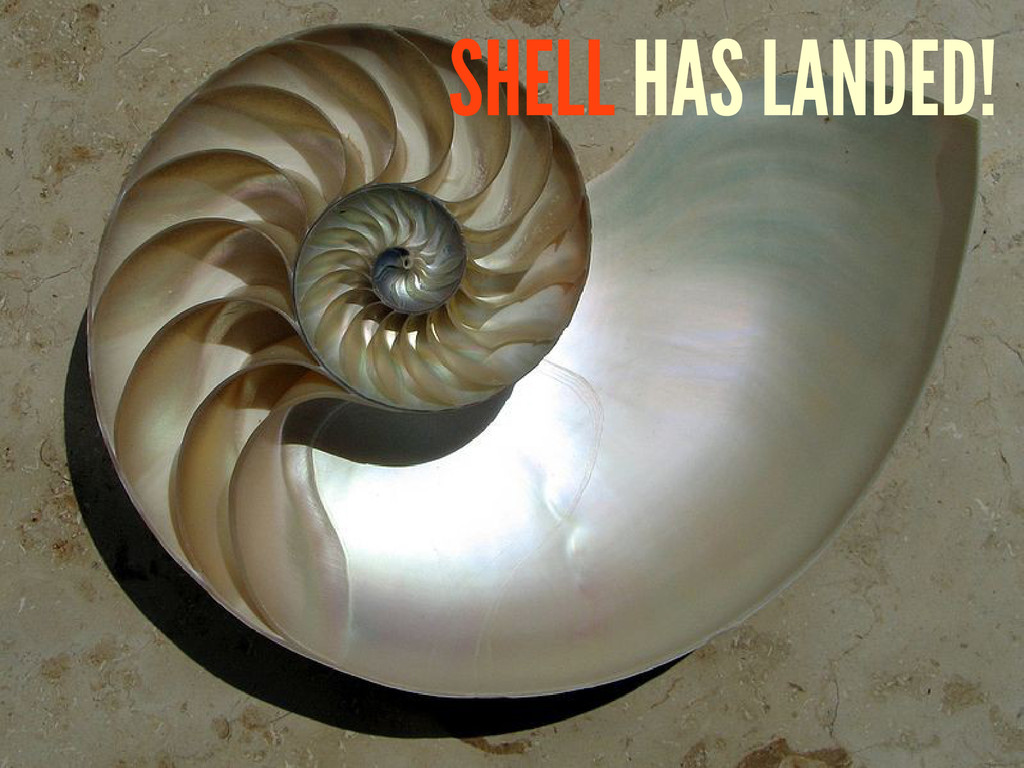 SHELL HAS LANDED!