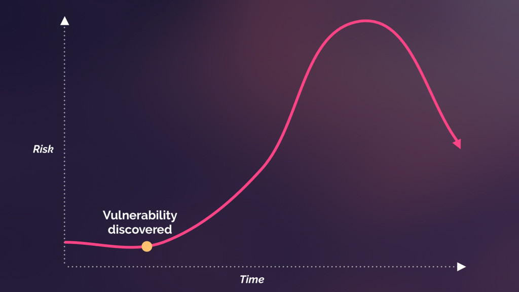 Vulnerability discovered Time Risk
