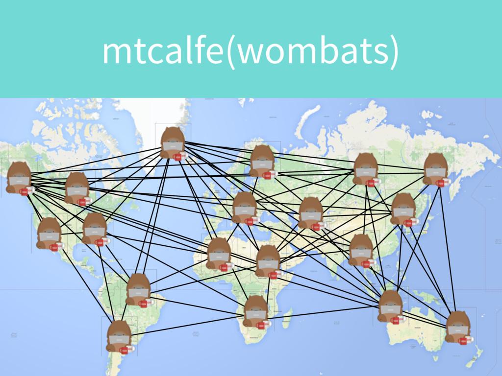 mtcalfe(wombats)