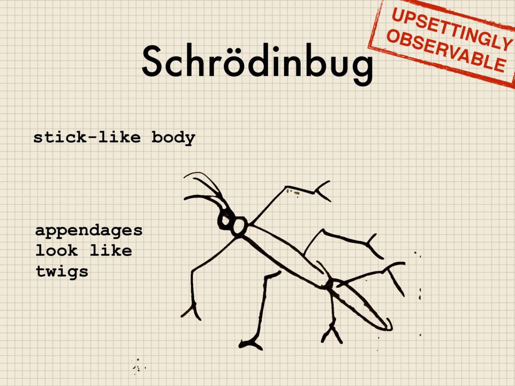 Schrödinbug stick-like body appendages look lik...