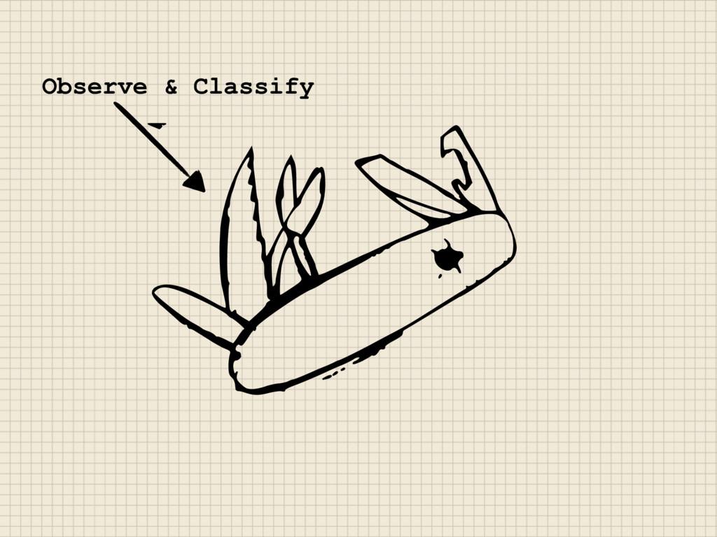 Observe & Classify