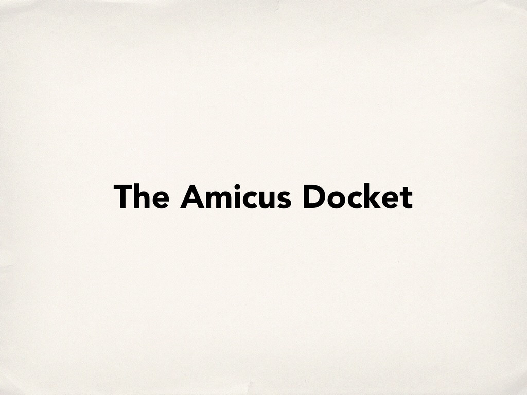 The Amicus Docket
