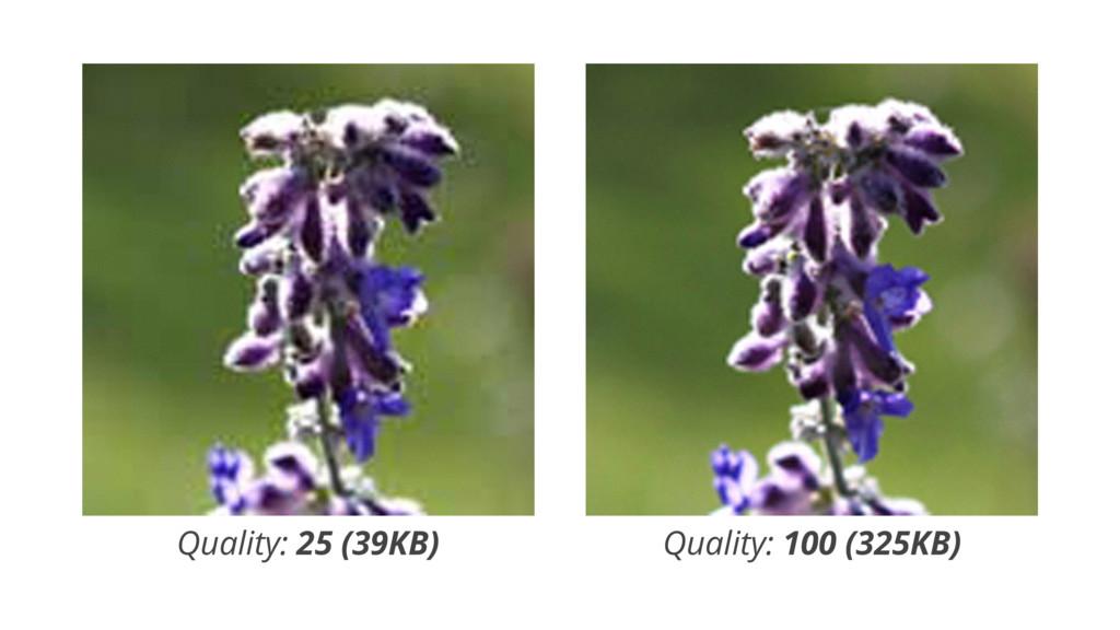 Quality: 25 (39KB) Quality: 100 (325KB)