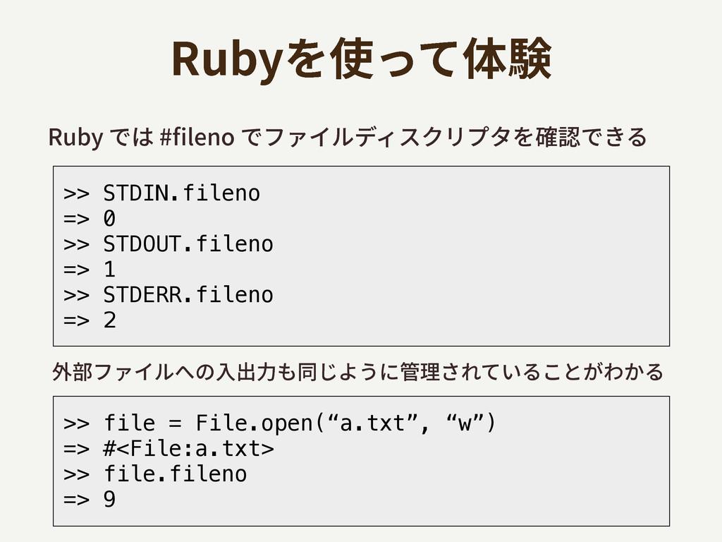 3VCZדכMFOPדؿ؋؎ٕر؍أؙٔفة然钠דֹ >> STDIN.fil...