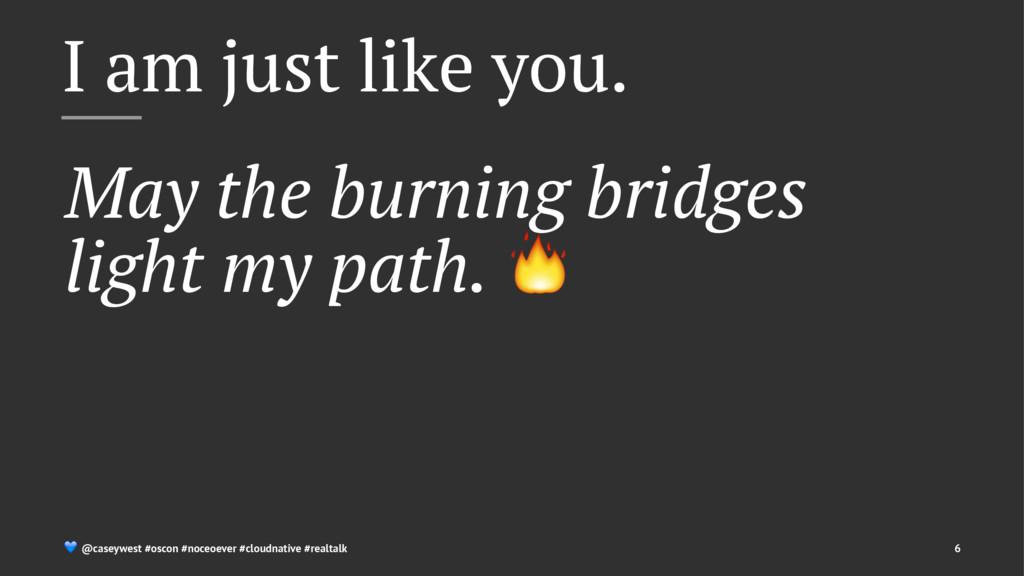 I am just like you. May the burning bridges lig...