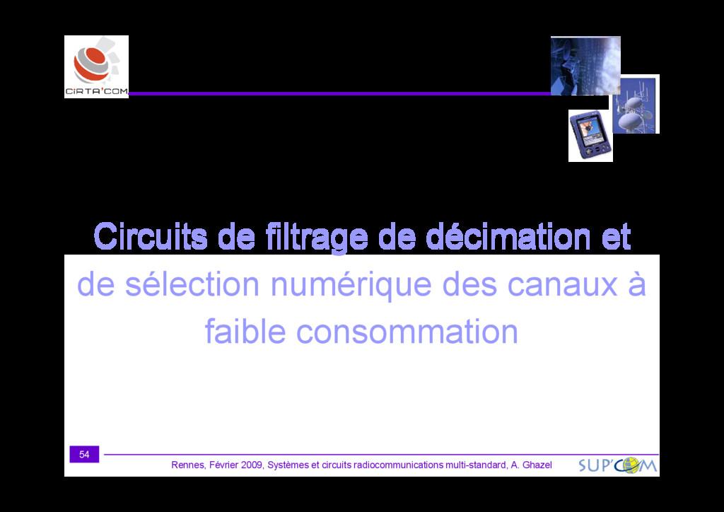 Circuits de filtrage de décimation et Rennes, F...