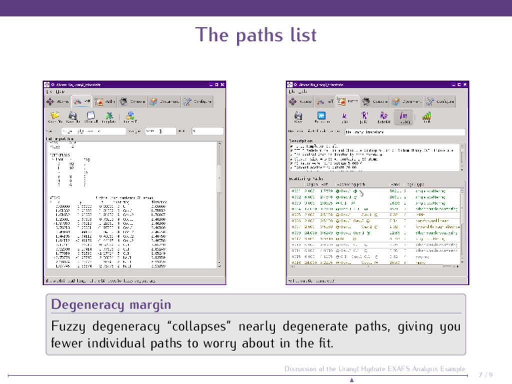 The paths list Degeneracy margin Fuzzy degenera...