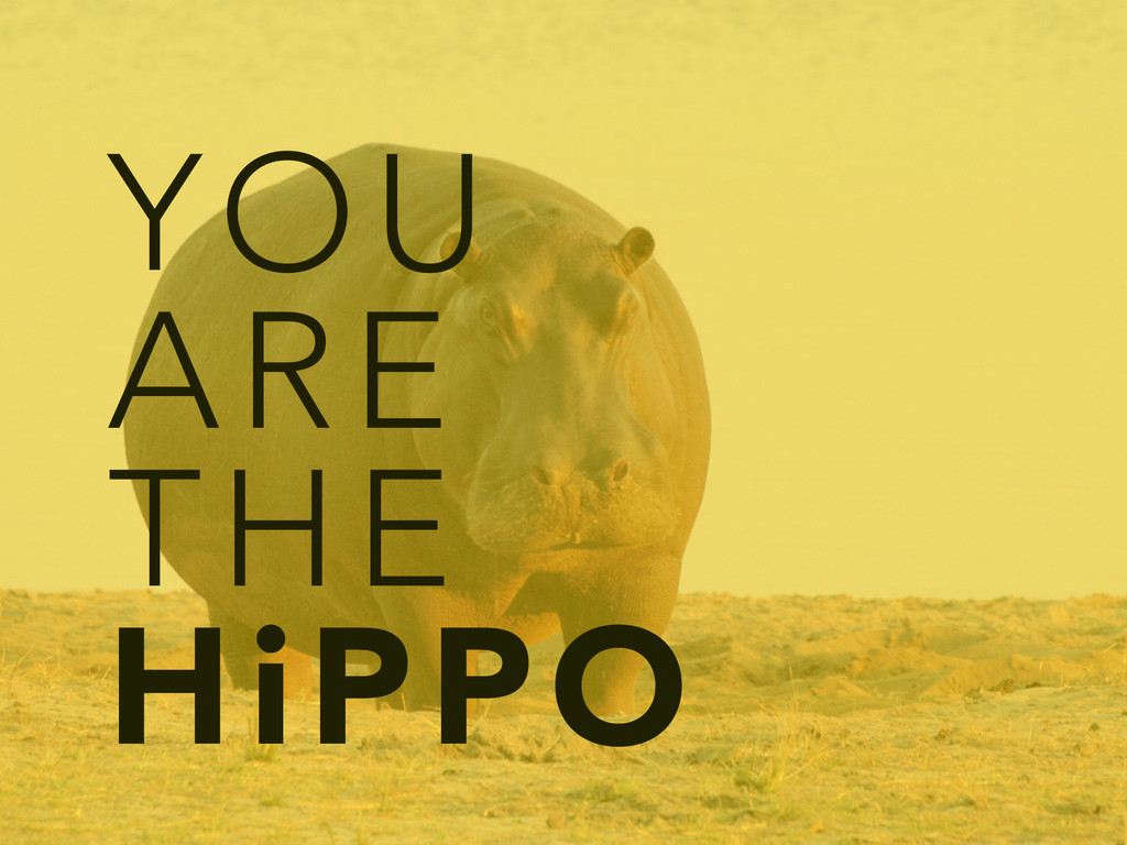 YOU ARE THE HiPPO