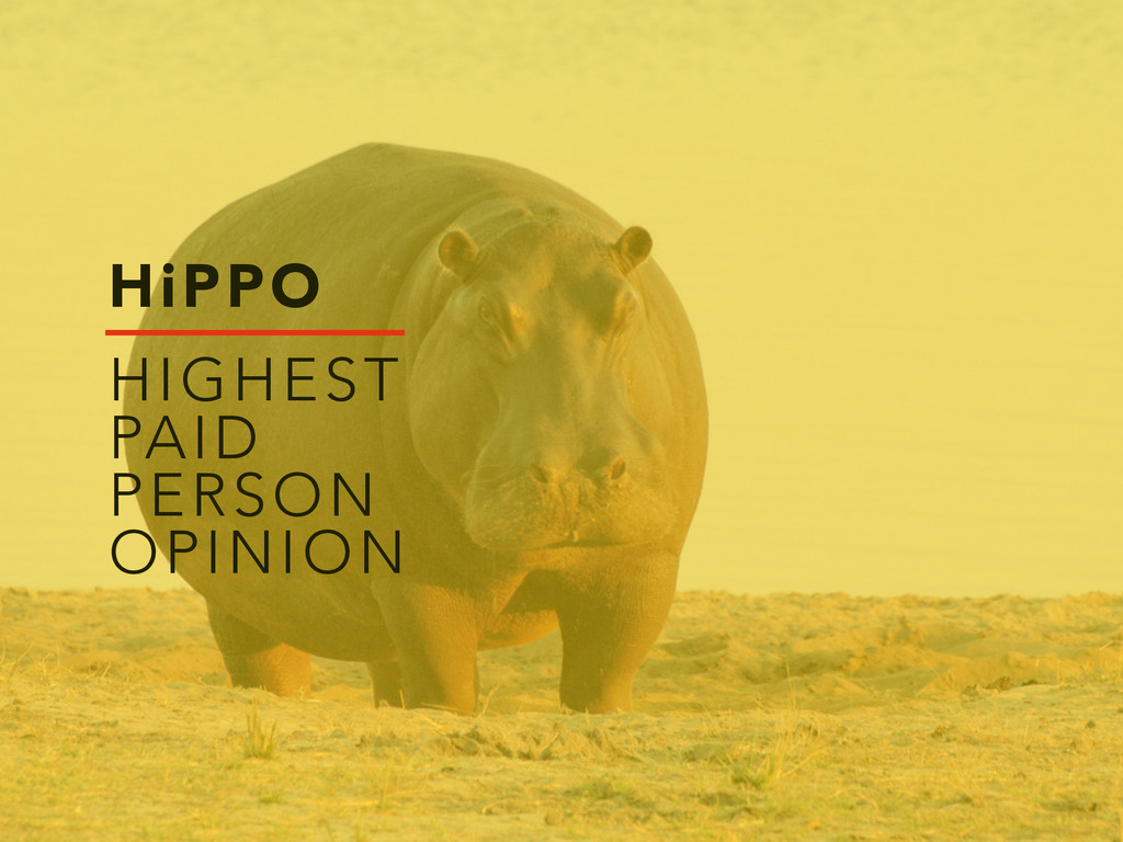 HiPPO HIGHEST PAID PERSON OPINION