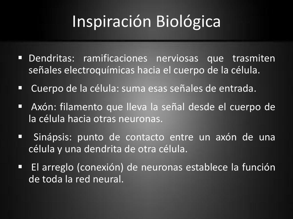 Inspiración Biológica  Dendritas: ramificacion...