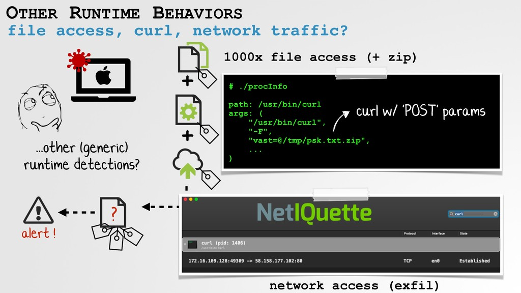 OTHER RUNTIME BEHAVIORS file access, curl, netw...