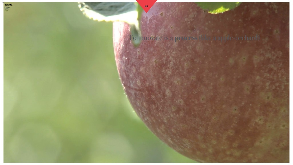 49 To innovate is a process (like a apple-orcha...