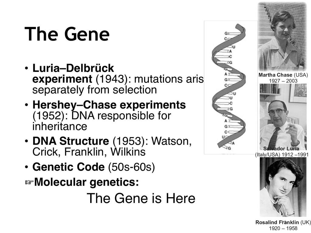 The Gene • Luria–Delbrück experiment (1943): mu...