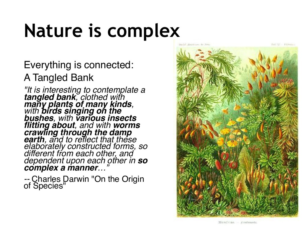 Nature is complex Everything is connected: A Ta...