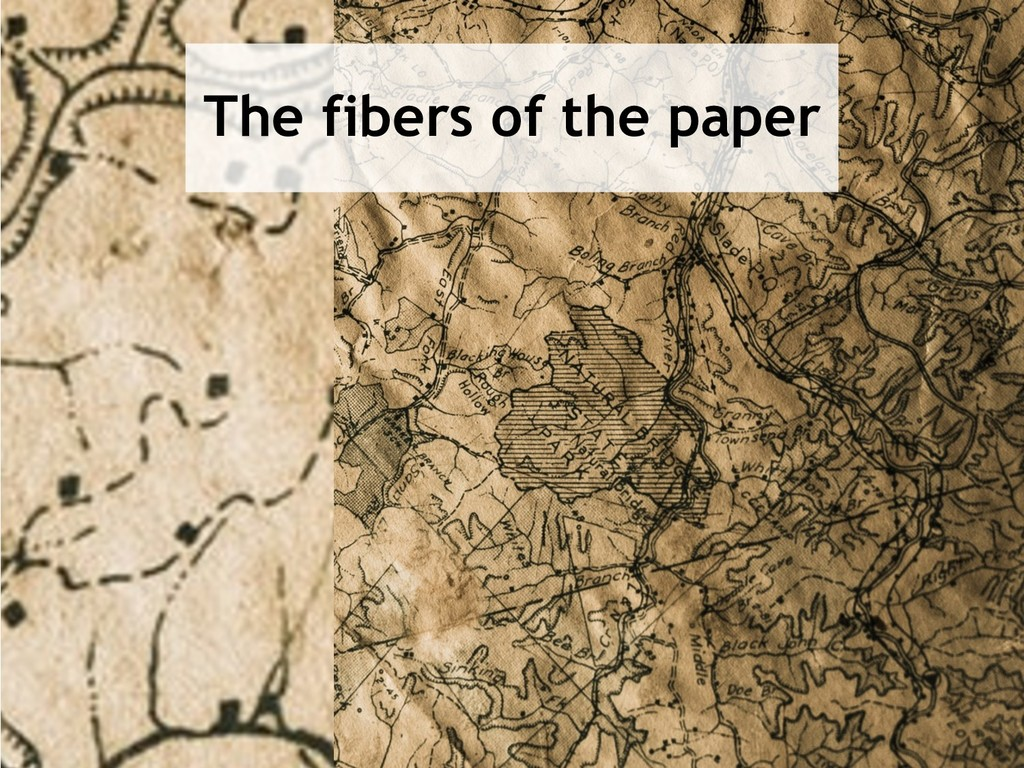 24 The fibers of the paper
