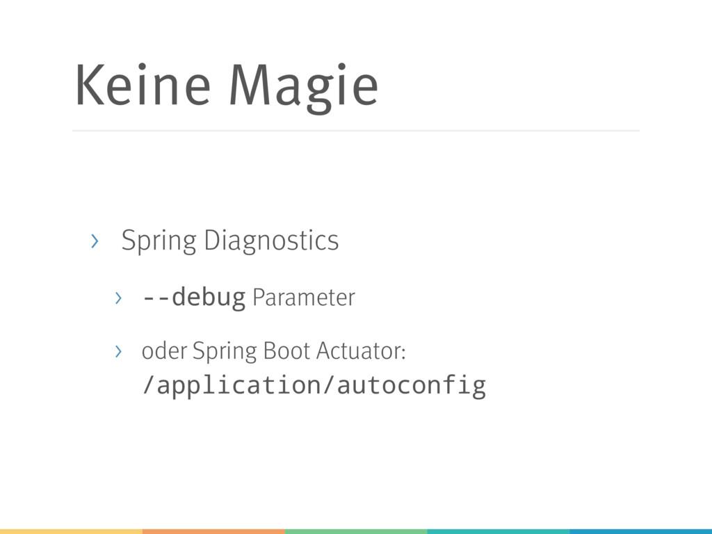 Keine Magie > Spring Diagnostics > --debug Para...