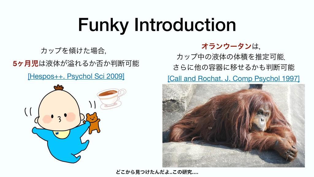 Funky Introduction ΧοϓΛ͚ͨ߹ɼ  5ϲ݄ӷମ͕ᷓΕΔ͔൱͔அ...