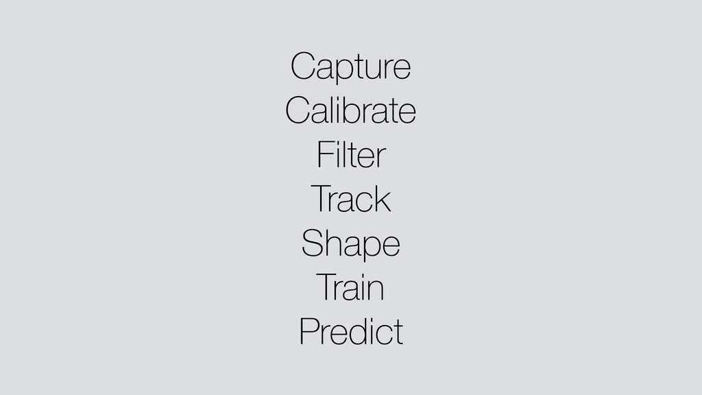 Capture Calibrate Filter Track Shape Train Pred...