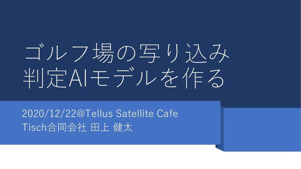 ゴルフ場の写り込み 判定AIモデルを作る 2020/12/22@Tellus Satellit...