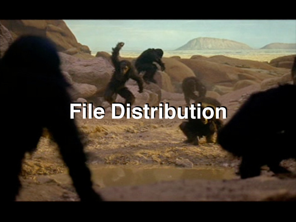 File Distribution