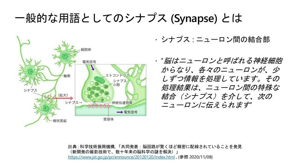 一般的な用語としてのシナプス (Synapse) とは  シナプス : ニューロン間の結合部...