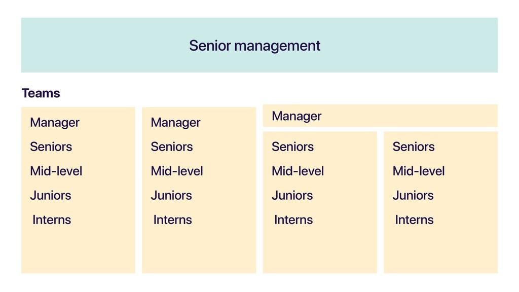 Senior management Manager Seniors Mid-level Jun...
