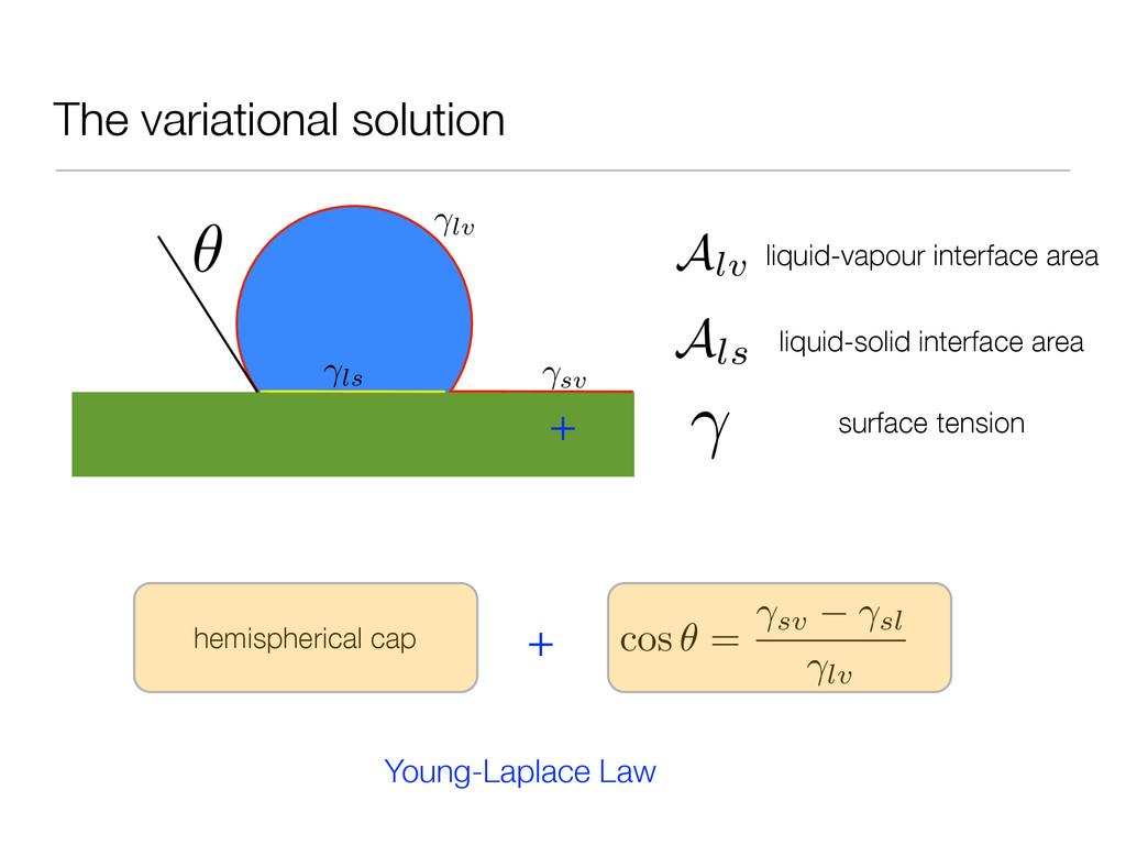 The variational solution lv sv ls ✓ Alv Als liq...