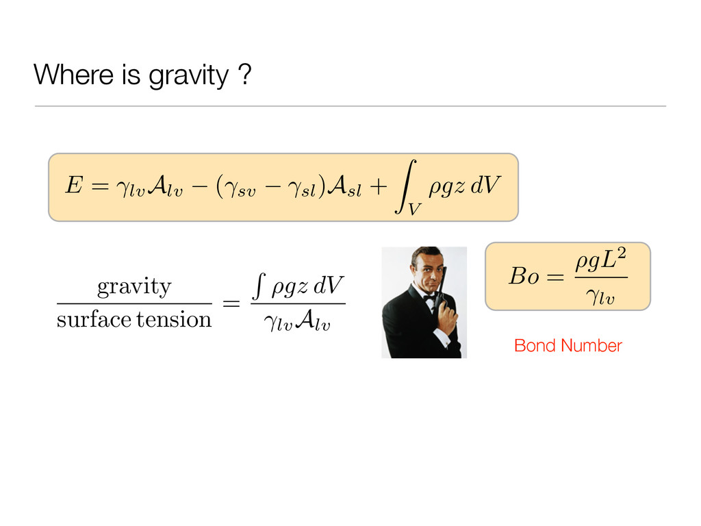Where is gravity ? E = lv Alv ( sv sl)Asl + Z V...