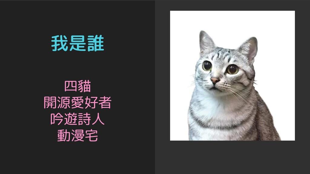 我是誰 四貓 開源愛好者 吟遊詩人 動漫宅