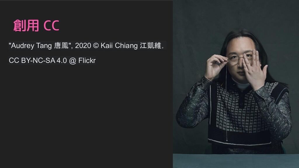 "創用 CC ""Audrey Tang 唐鳳"", 2020 © Kaii Chiang 江凱維,..."